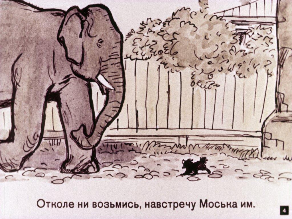 1515013596_00006.jpg